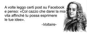 Voltaire tu possa esprimere la tua opinione