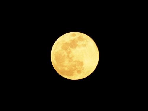 Moon19-02-19