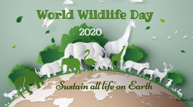 world-wildlife-day-feature-800x445-1